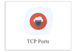 add the TCP PORT Monitor