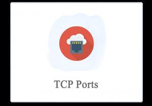 پایشگر بررسی پورت ها، TCP PORT